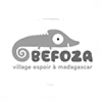 L'équipe Befozamada